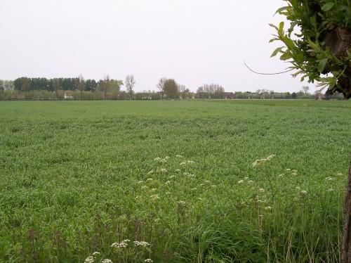 Oostkerke (68).JPG