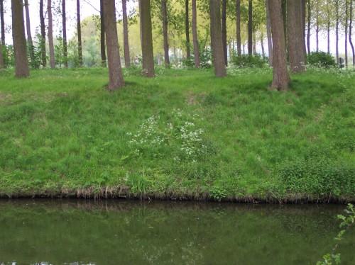 Oostkerke (74).JPG
