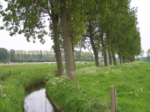 Oostkerke (144).JPG