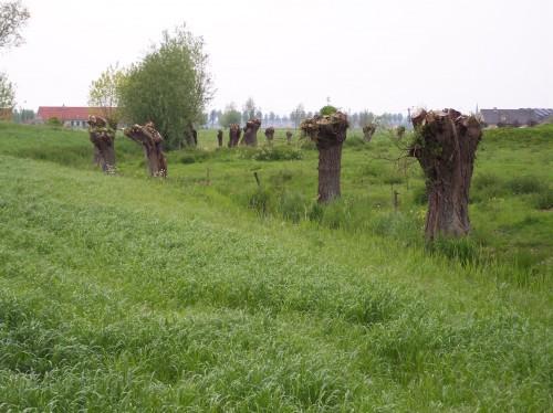 Oostkerke (111).JPG
