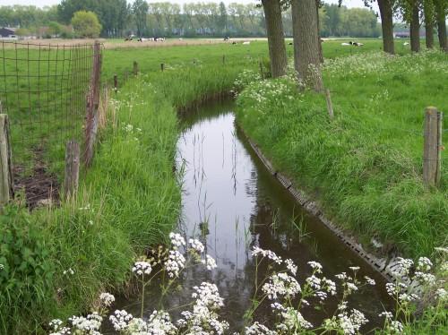 Oostkerke (141).JPG