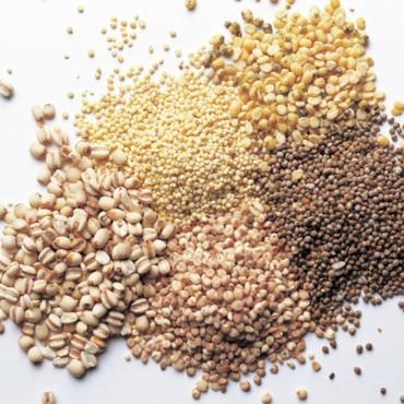 alimentation,super,aliments,lentilles,graines,soja,flocons,avoine,son,blé,oeufs