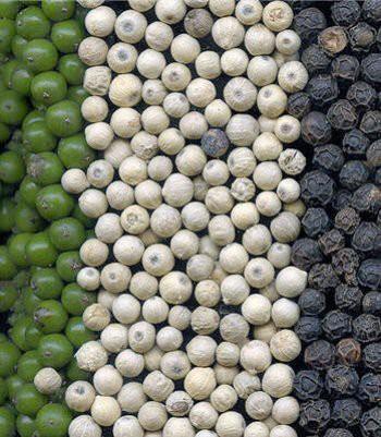 cuisine,piquant,poivre,noir,blanc,vert