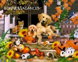 animaux,conseils,gardiennage,placement,vacances,pension