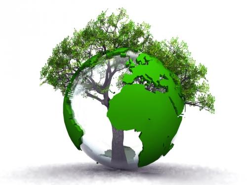 environnement,développement,durable,maison