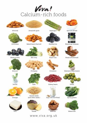 alimentation,sels,minéraux,calcium